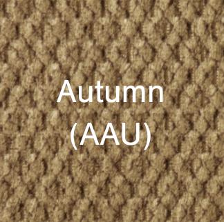 Autumn - color
